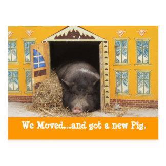 Casa y cerdo movimos nuevas tarjetas de la direcci postal