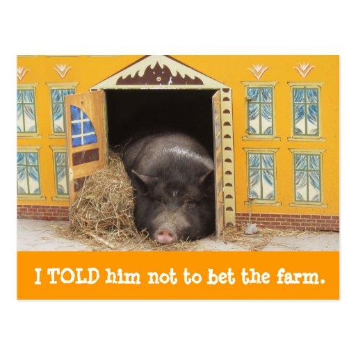 Casa y cerdo movimos nuevas tarjetas de la direcci tarjeta postal