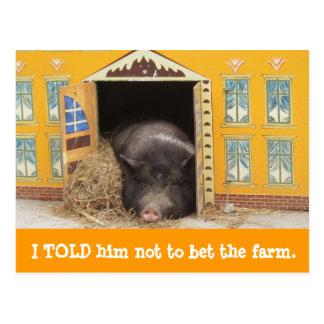 Casa y cerdo movimos nuevas tarjetas de la postal