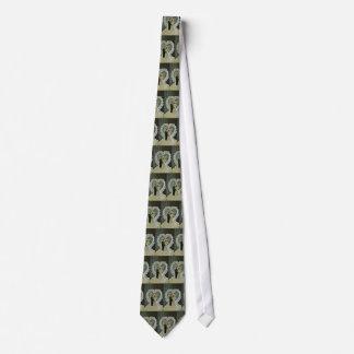 Casar el lazo corbata