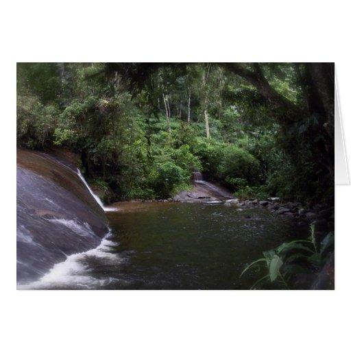 Cascada brasileña tarjetón