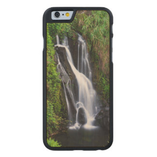 Cascada, costa de Hamakua, Hawaii Funda Fina De Arce Para iPhone 6 De Carved