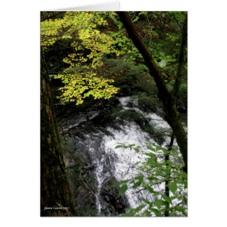Cascada de Nueva Inglaterra Tarjeta