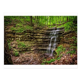Cascada del bosque postal
