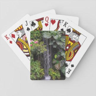 Cascada del jardín enorme, China Baraja De Cartas