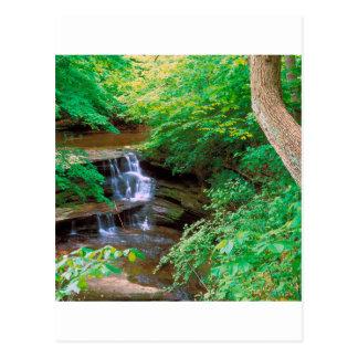 Cascada en el parque de estado hambriento de la postal