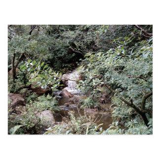 Cascada en la postal de los jardines del japonés d