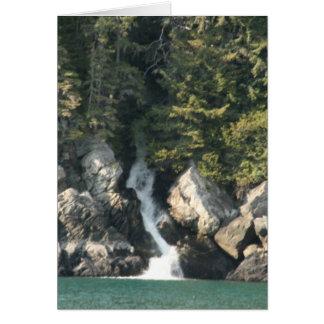 Cascada Tarjetón