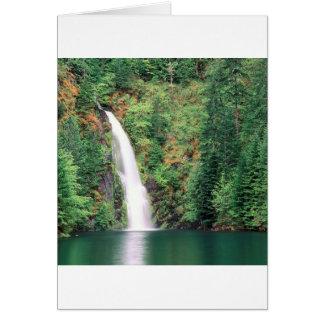 Cascada Willamette Tarjeta