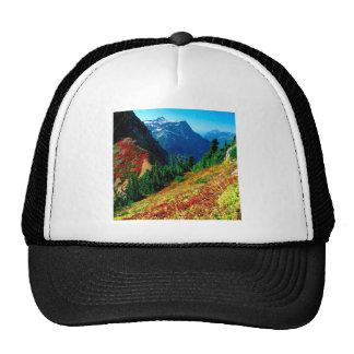 Cascadas del norte de la montaña en panadero del o gorras