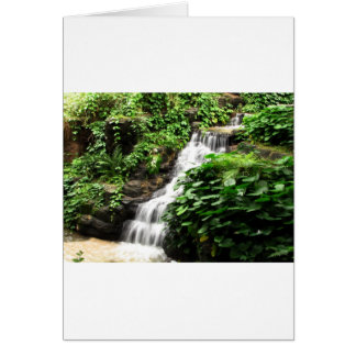 cascadas tarjeta