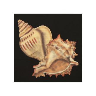Cáscaras artísticas de la concha impresión en madera