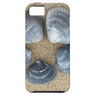 Cáscaras azules funda para iPhone SE/5/5s