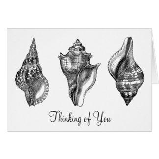 Cáscaras detalladas magníficas del mar del vintage tarjeta de felicitación