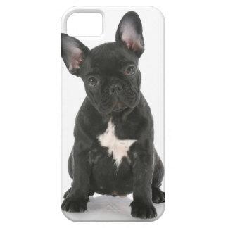 """CASE iPhone 5 """"PET """" iPhone 5 Carcasas"""