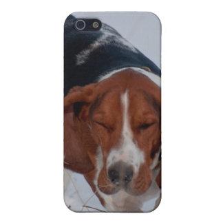 Caso 1 de Basset Hound iPhone 5 Cárcasa