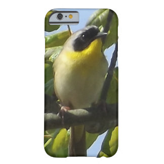 Caso de IPhone del Yellowthroat común Funda Barely There iPhone 6