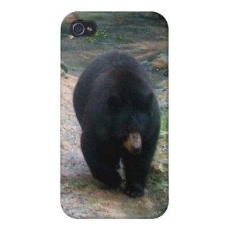 Caso de Shell duro del iPhone 4 americanos del oso iPhone 4 Cárcasa