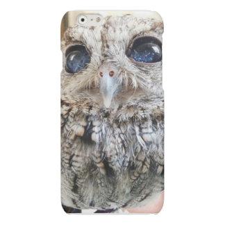 caso del búho del iphone