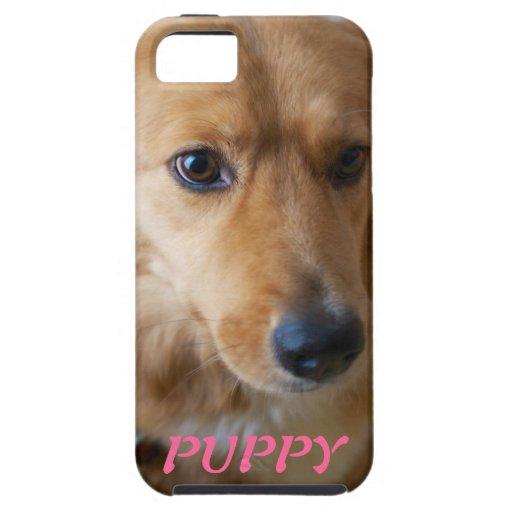 Caso del iPhone 5 de la foto del mascota del perri iPhone 5 Protectores