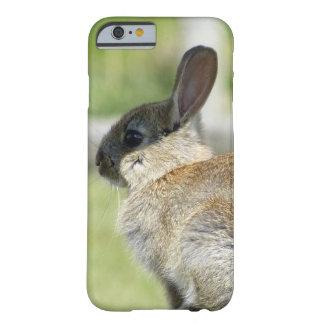 caso del iPhone 6 con el conejo en perfil Funda Para iPhone 6 Barely There
