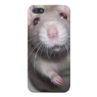 Caso del iPhone de Izzy del bebé de la rata del iPhone 5 Funda