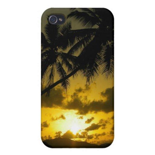 Caso del iphone de la puesta del sol de la palmera iPhone 4 protector