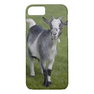 Caso enano del iPhone 7 de la cabra Funda iPhone 7
