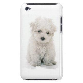Caso lindo de Bichon Frise iTouch Barely There iPod Carcasa