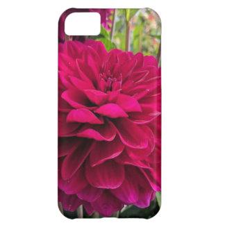 Caso rosado del iPhone de la dalia Carcasa Para iPhone 5C