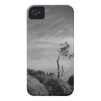 Caso solo del iPhone del árbol con la ranura para  iPhone 4 Case-Mate Cárcasas