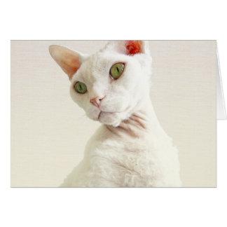 Casper en tarjeta de cumpleaños del gato del beige