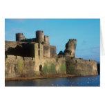 Castillo de País de Gales - de Caerphilly, con vis Felicitaciones