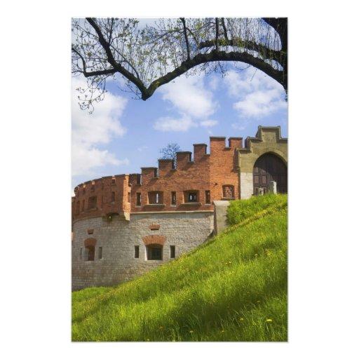 Castillo de Wawel, Kraków, Polonia Arte Fotografico