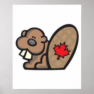 castor canadiense lindo posters