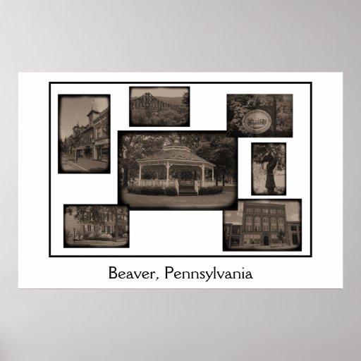 Castor, collage de Pennsylvania Posters