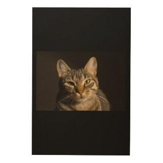 CAT CURIOSO IMPRESIÓN EN MADERA