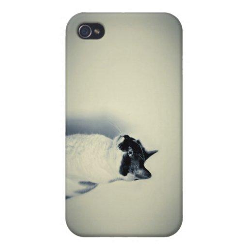 Cat hipster retro case iphone 4 iPhone 4 fundas