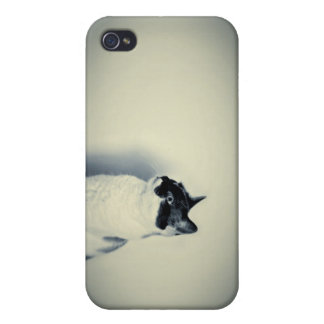Cat hipster retro case iphone 4 iPhone 4 protectores