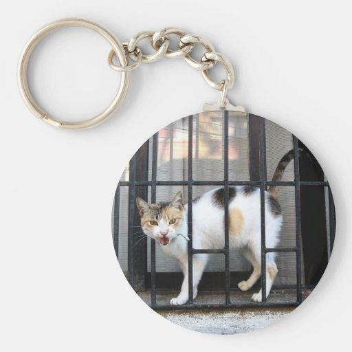 Cat Llavero