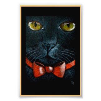CAT NEGRO de HALLOWEEN con la IMPRESIÓN ANARANJADA Foto