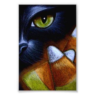 CAT NEGRO de HALLOWEEN con las PASTILLAS DE Impresión Fotográfica