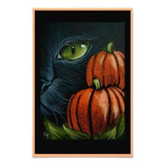 """CAT NEGRO de HALLOWEEN con PIMPKINS 4"""" X 6"""" Foto"""