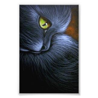 "CAT NEGRO DE LA FANTASÍA DE HALLOWEEN 4"" X 6"" FOTO"