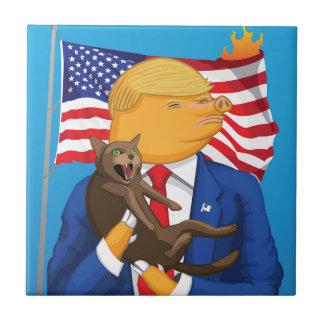 Catástrofe americana azulejo