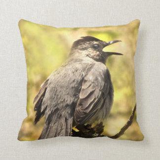 Catbird gris que canta su almohada de tiro de la