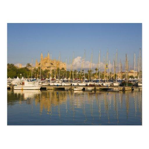 Catedral y puerto deportivo, Palma, Mallorca, Espa Tarjetas Postales