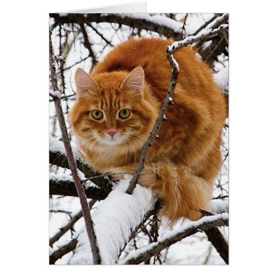 cats_and_snow_ (14) tarjeta de felicitación
