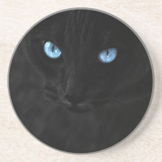 cats blue eyes posavasos de arenisca