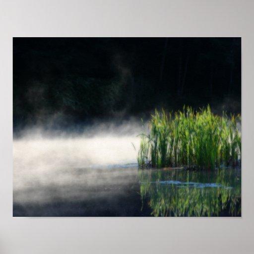 Cattails y niebla en una naturaleza de la charca impresiones